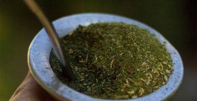 yerba mate y te verde