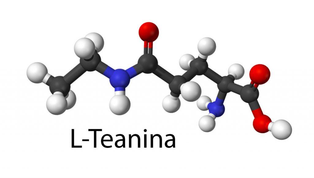 Propiedades de la l-teanina